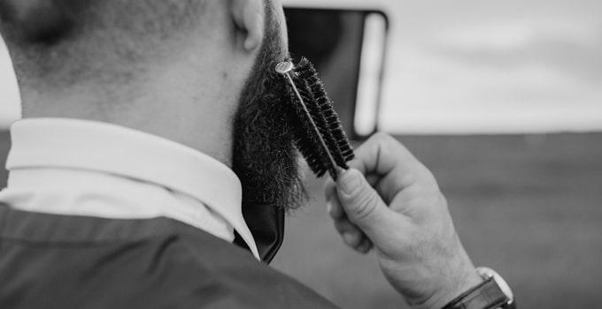 brosse à barbe - barbedudaron.fr