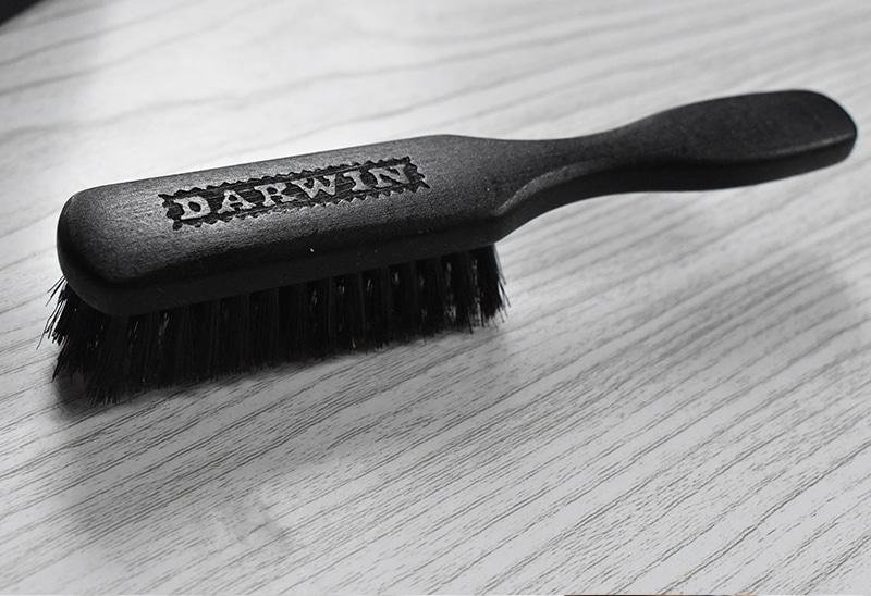 Brosse à barbe Darwin | Avis et test